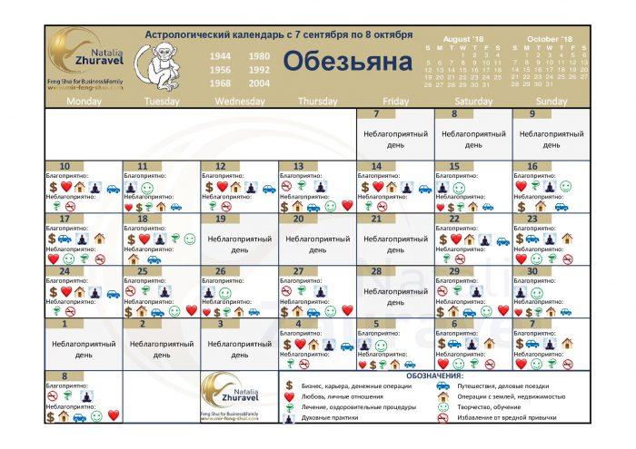 foto_obezjana_sept18